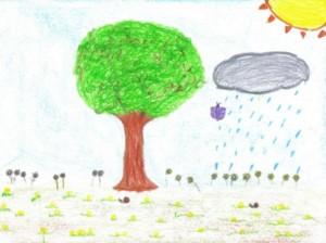 20110206212321-primavera-copiar-.jpg